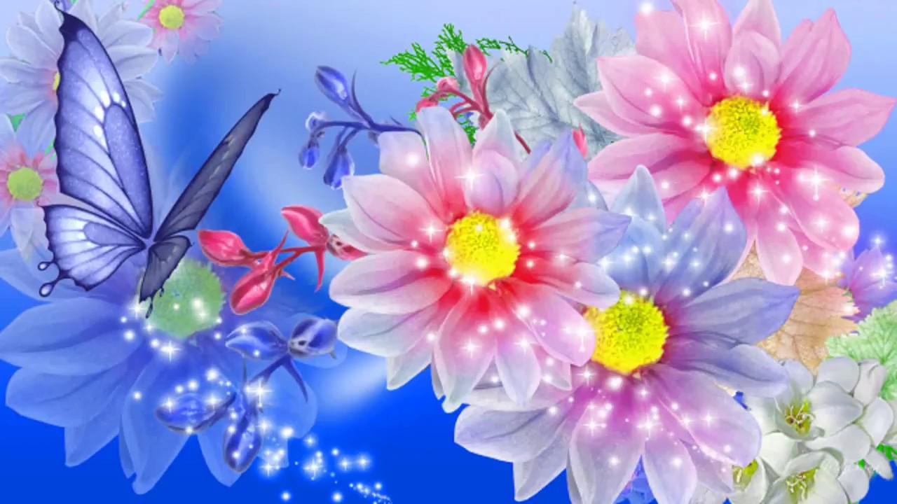nature wallpaper hd,flower,petal,plant,flowering plant,daisy