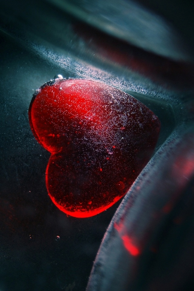 wallpaper hd love,red,water,close up,space,font