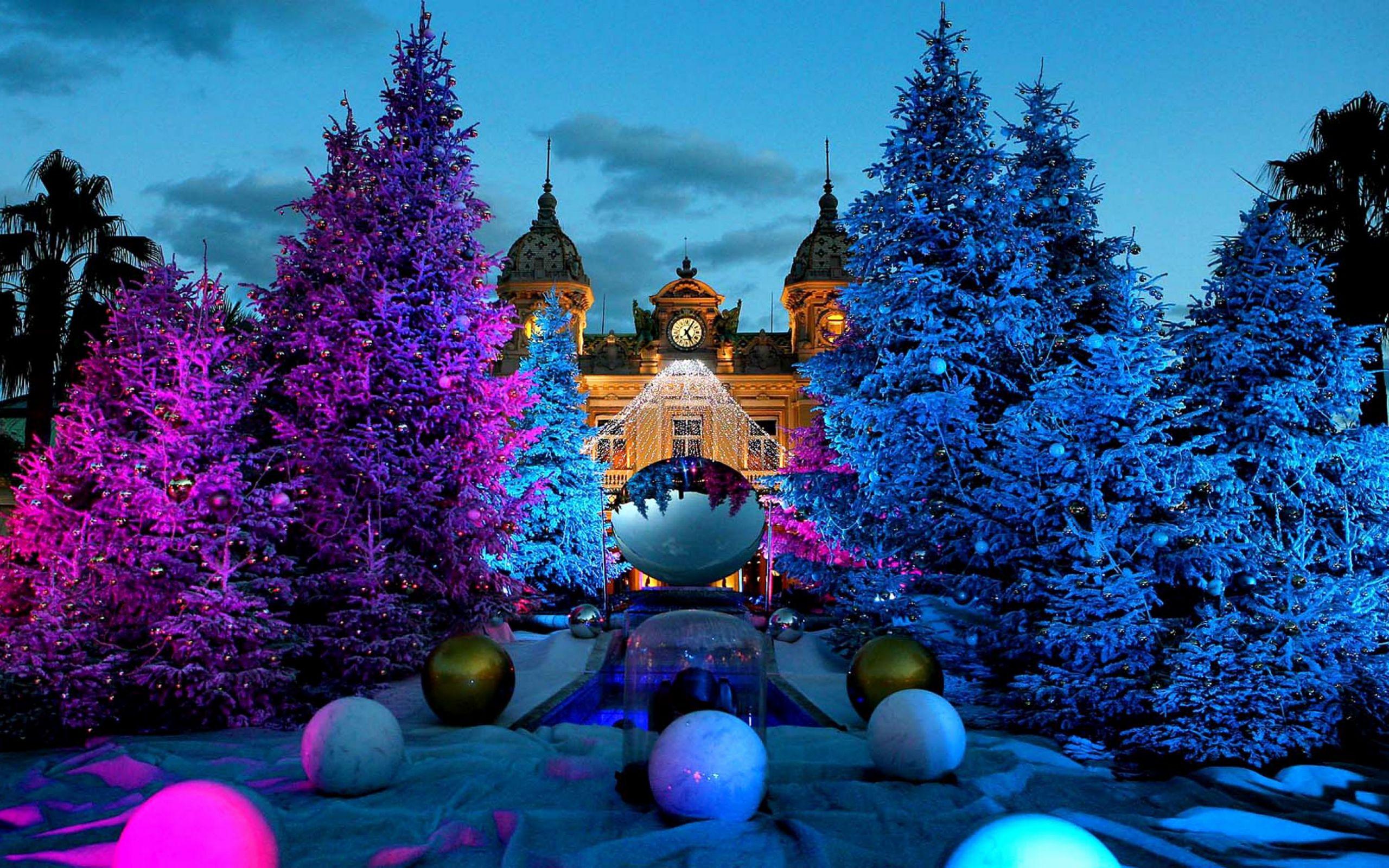 4k wallpaper,blue,christmas tree,tree,purple,majorelle blue