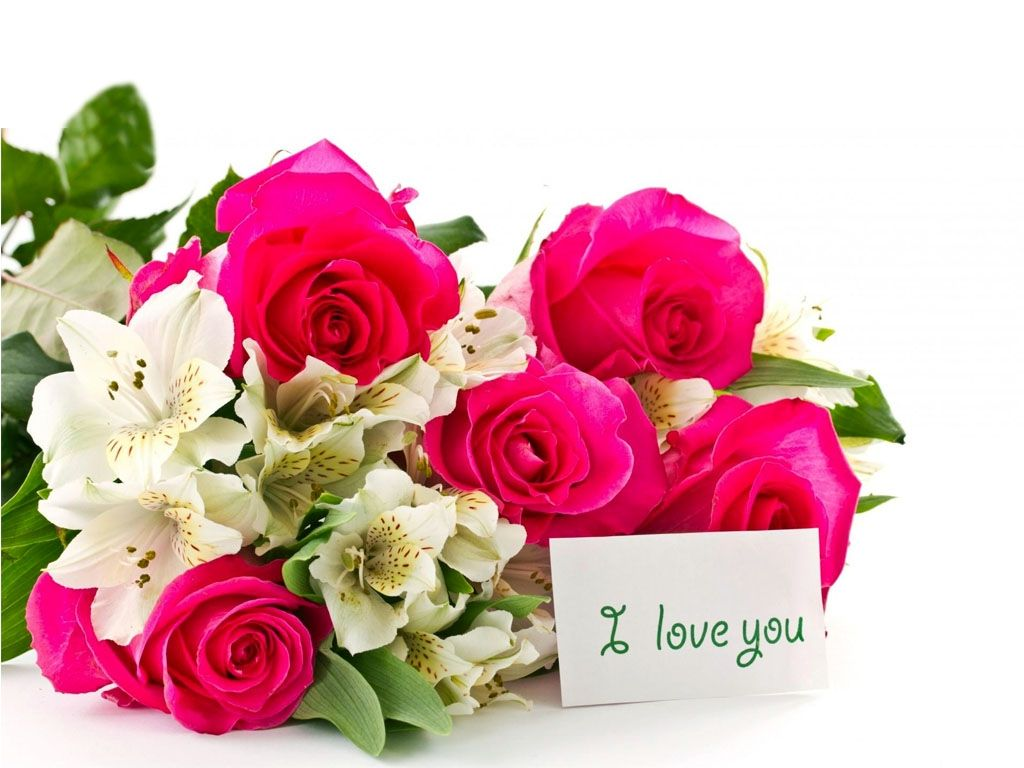 wallpaper download hd love,flower,flowering plant,bouquet,pink,cut flowers