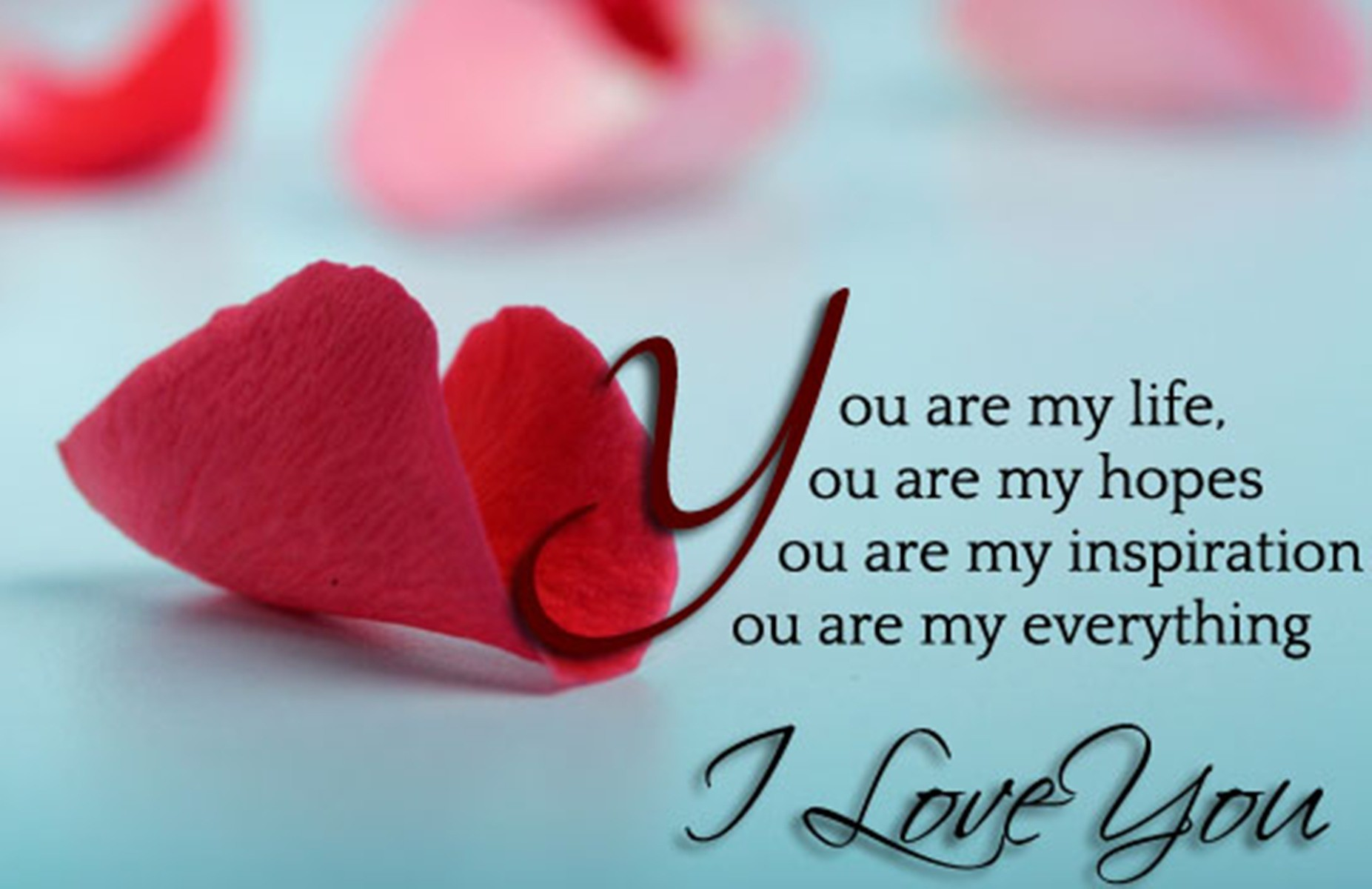 i love you wallpaper,pink,petal,text,valentine's day,font
