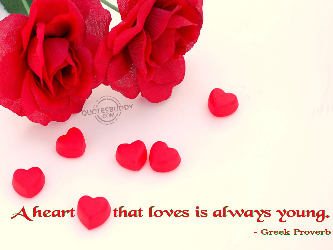 love quotes wallpaper,petal,red,valentine's day,pink,heart
