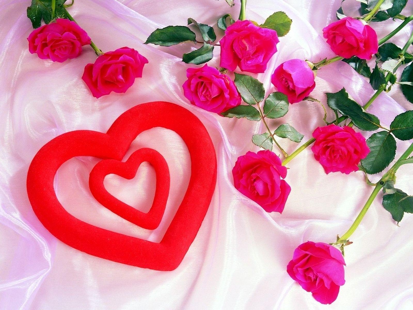 love flowers wallpapers,heart,pink,flower,garden roses,artificial flower