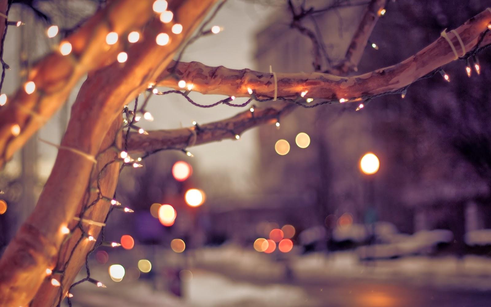 christmas lights wallpaper,branch,tree,light,lighting,night