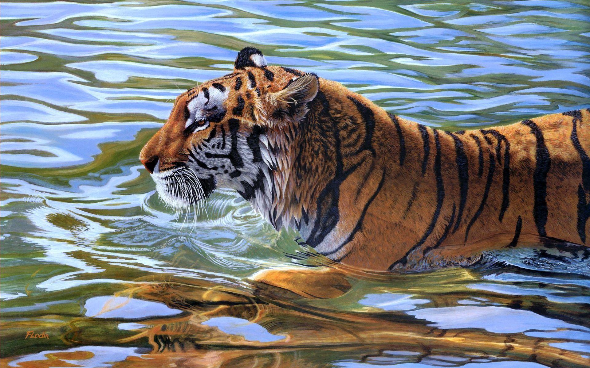 wallpaper animado,tiger,vertebrate,wildlife,bengal tiger,mammal