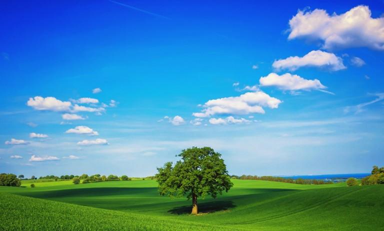 nature photo wallpaper,sky,natural landscape,grassland,green,nature