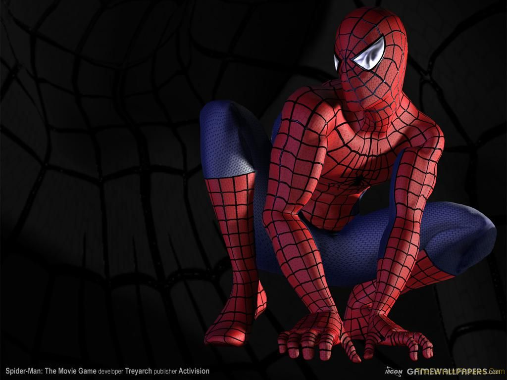 spiderman 3d wallpaper,spider man,fictional character,superhero,flesh