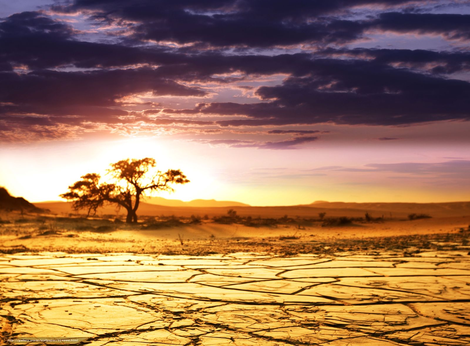 africa wallpaper,sky,natural landscape,nature,sunset,natural environment