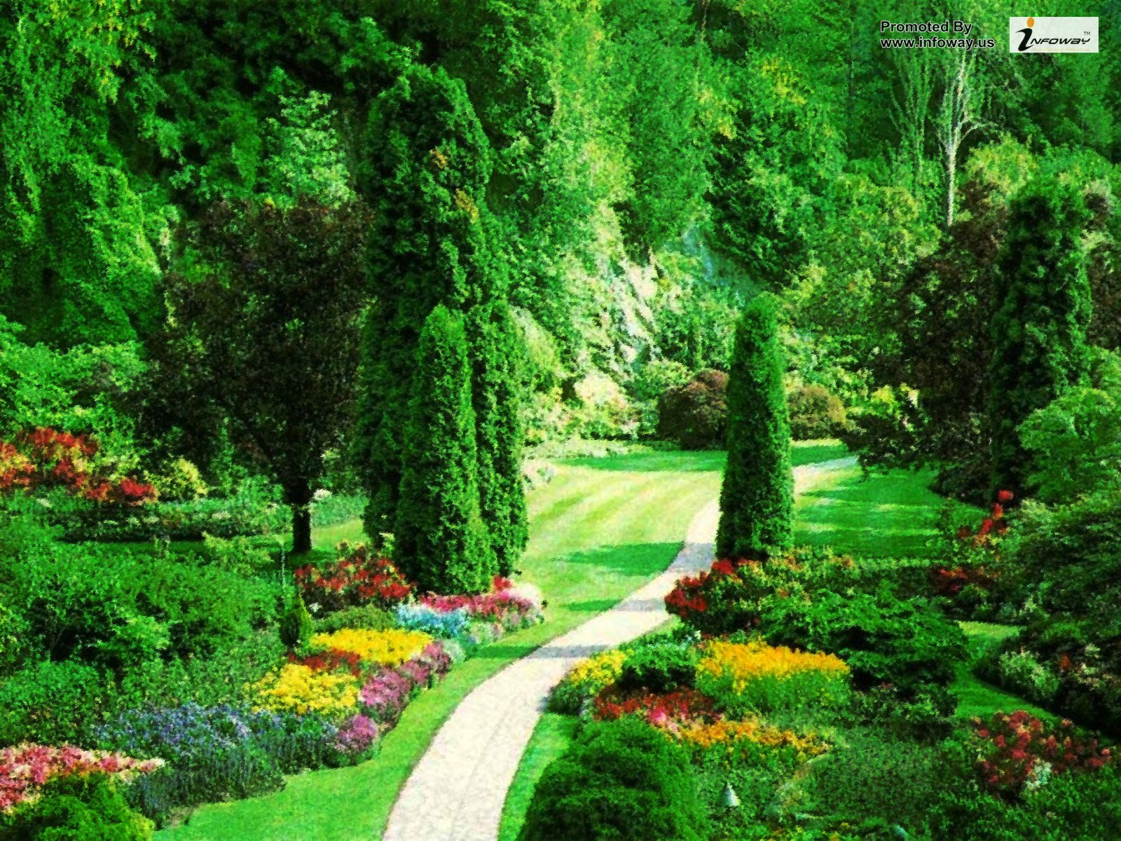 wallpaper nature 1600x1200,natural landscape,nature,vegetation,botanical garden,green