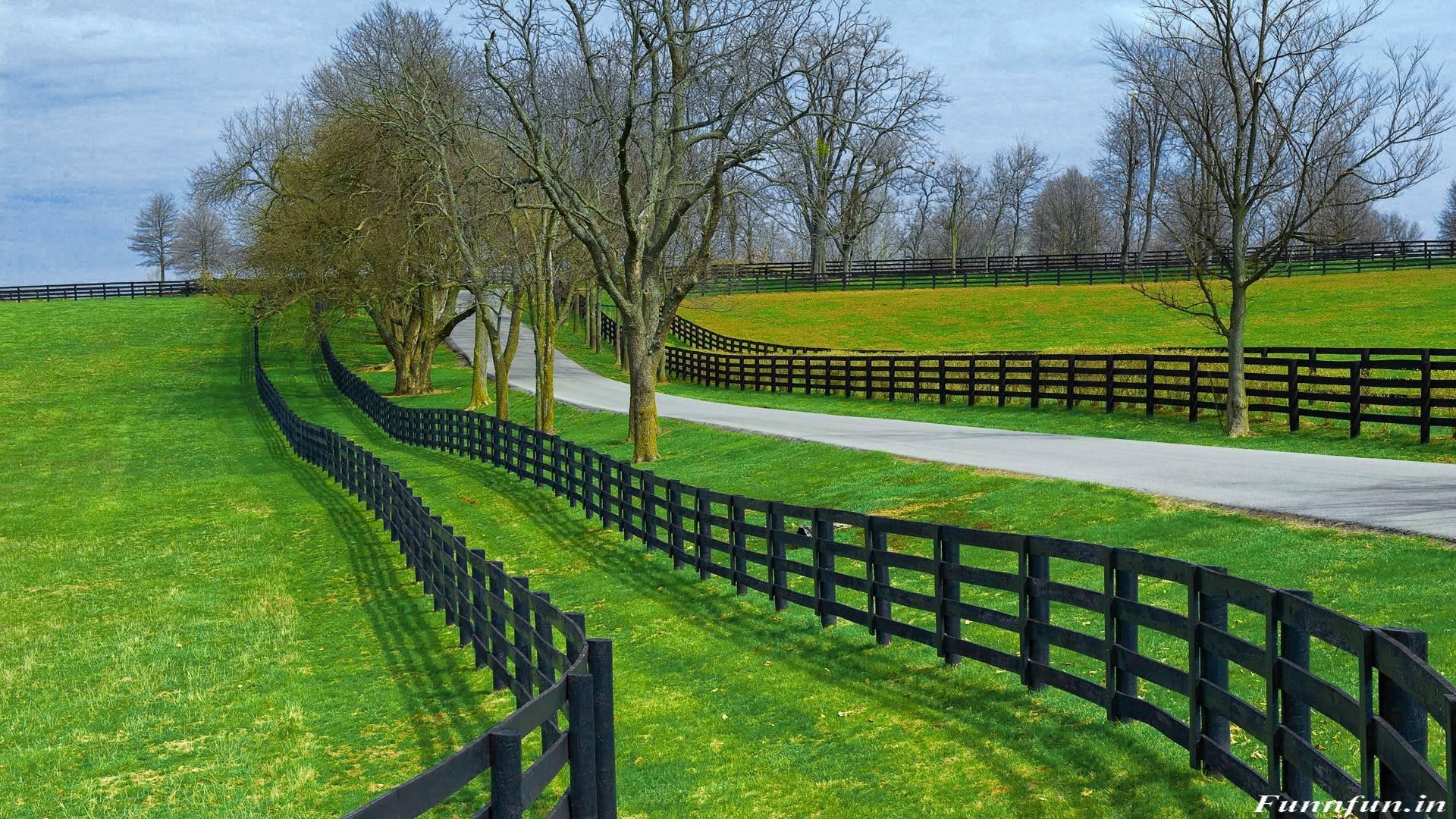 nature wallpaper full hd,green,natural landscape,fence,pasture,grass