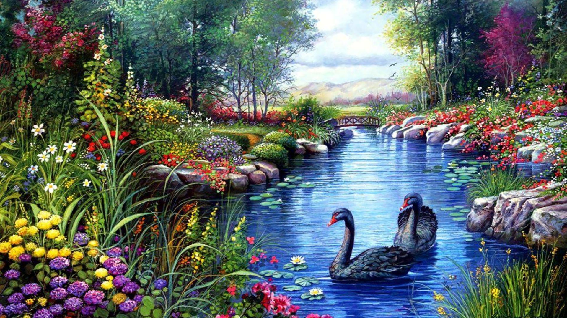 nature wallpaper full hd,natural landscape,swan,black swan,nature,pond