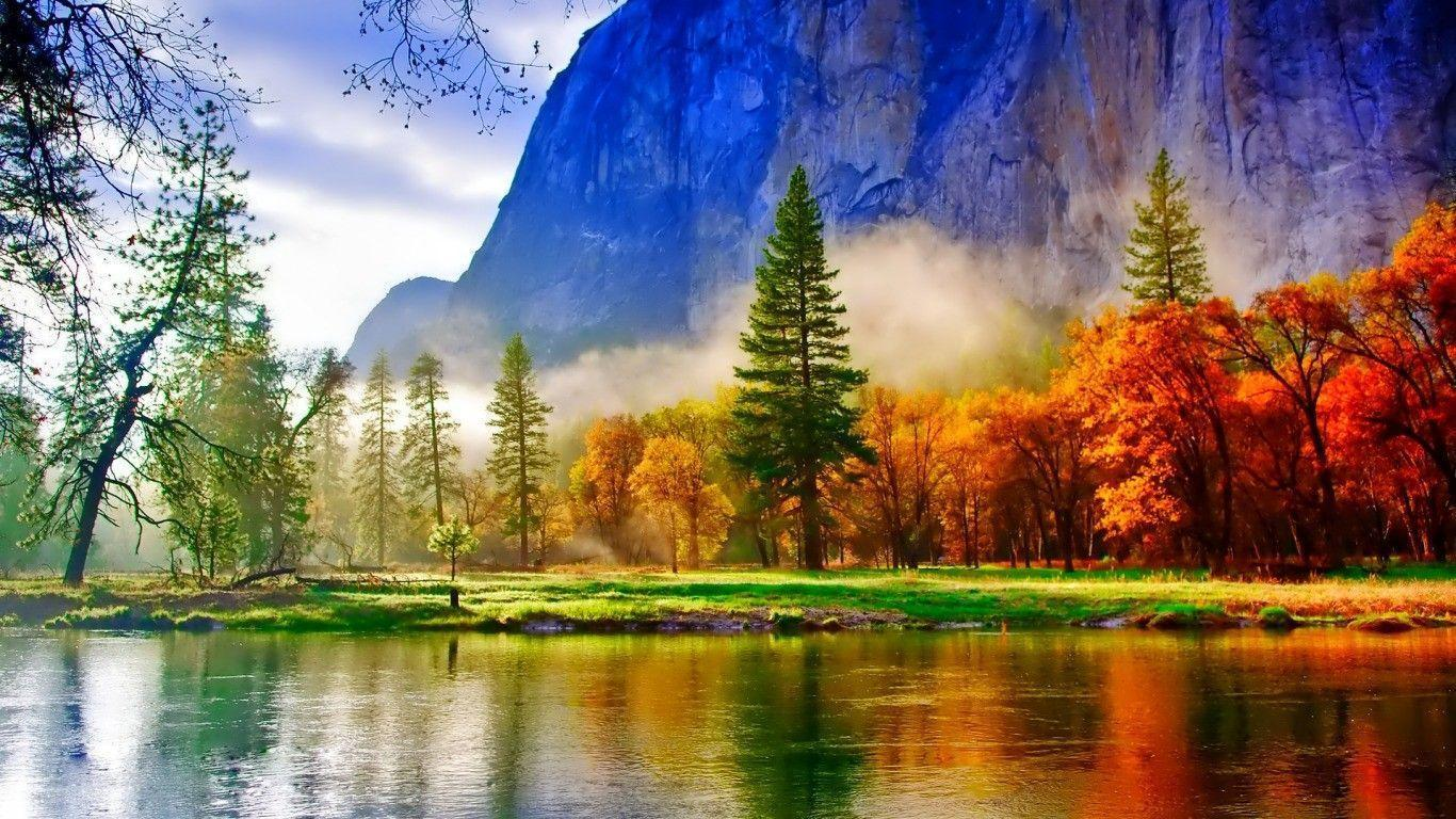 nature wallpaper full hd,nature,natural landscape,reflection,tree,wilderness
