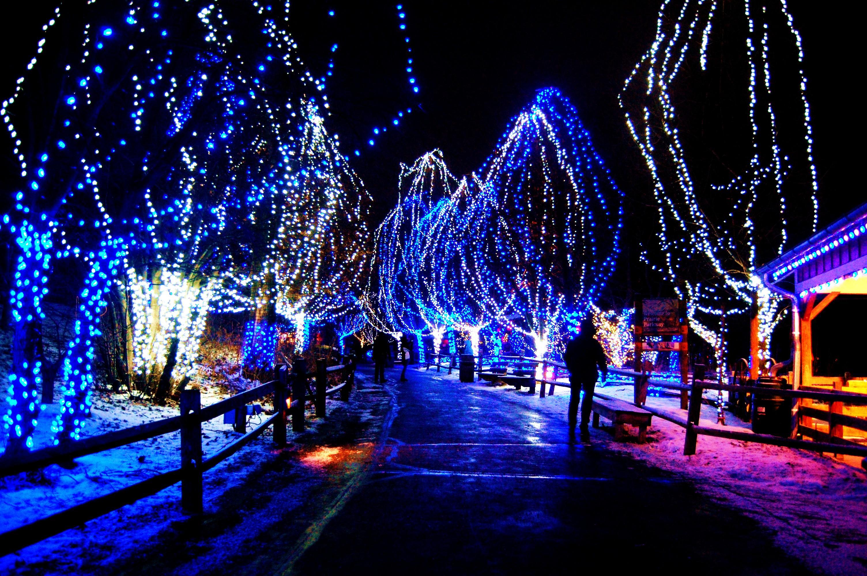 christmas live wallpaper,christmas lights,blue,light,landmark,lighting
