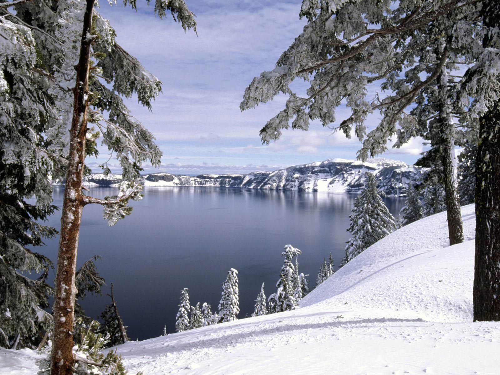 winter computer wallpaper,snow,winter,nature,tree,wilderness