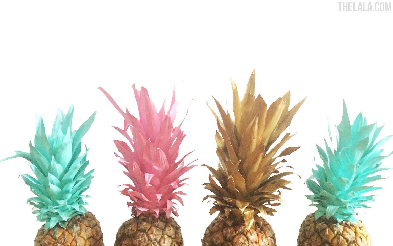 pineapple desktop wallpaper,pineapple,ananas,aquarium decor,plant,grass