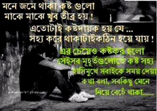 bengali love wallpaper download,text,font,photo caption,love,friendship