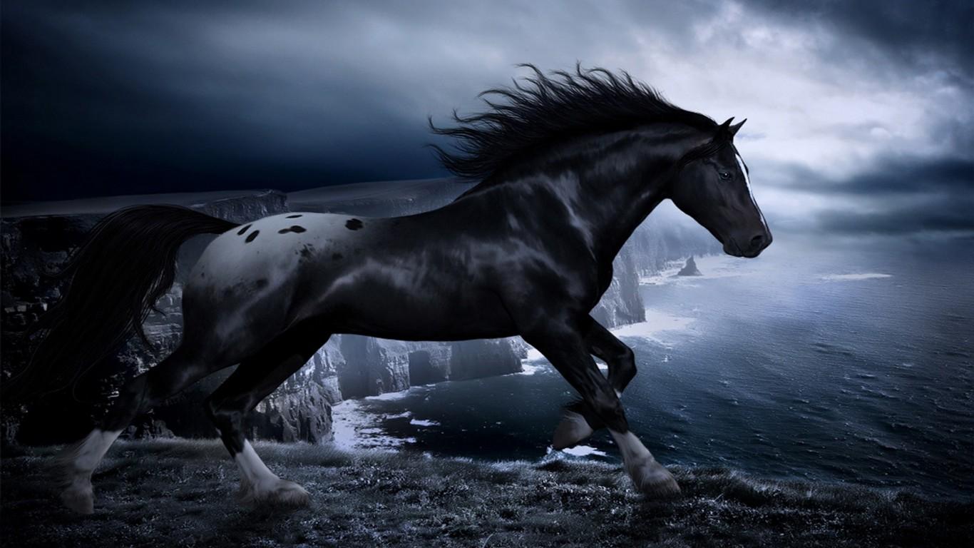 dark horse wallpaper,horse,sky,mane,stallion,black and white