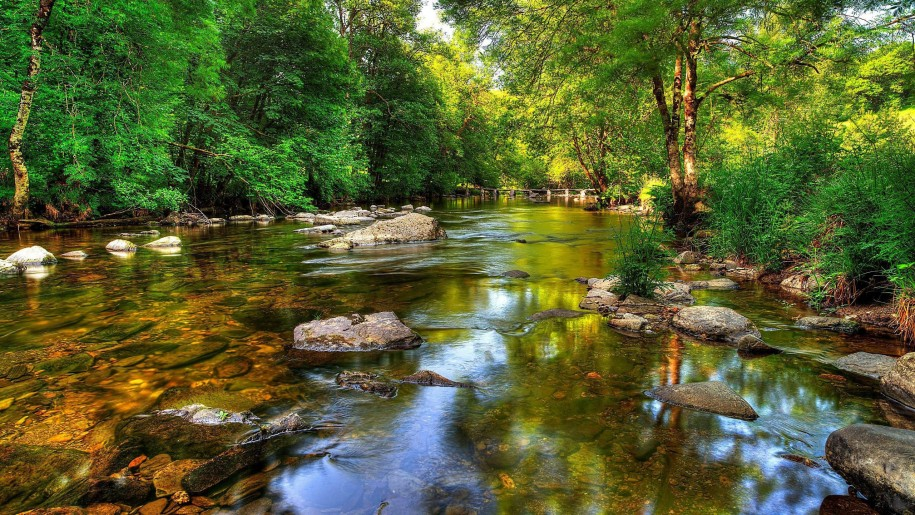 64k resolution wallpaper download,body of water,natural landscape,nature,riparian zone,stream