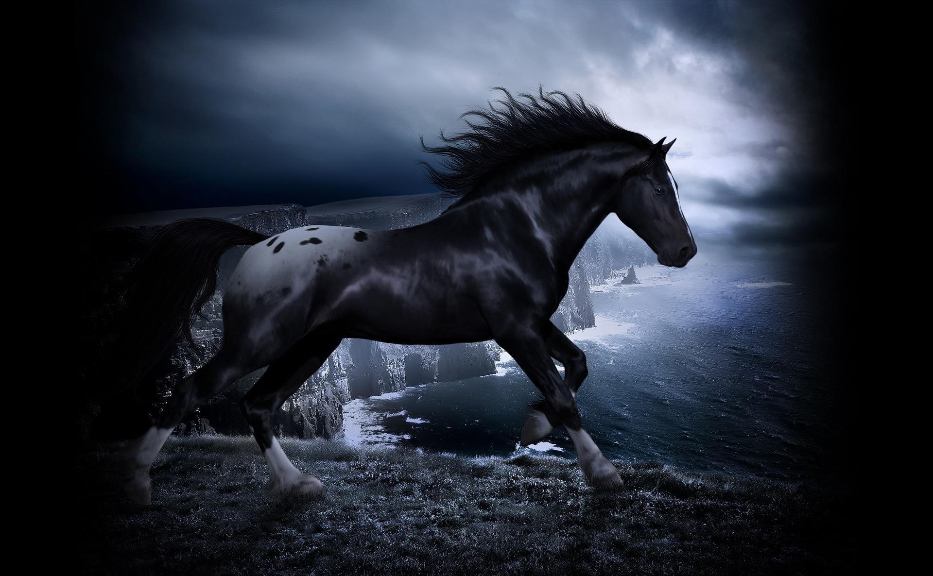 3d horse wallpaper,horse,stallion,mane,black and white,sky