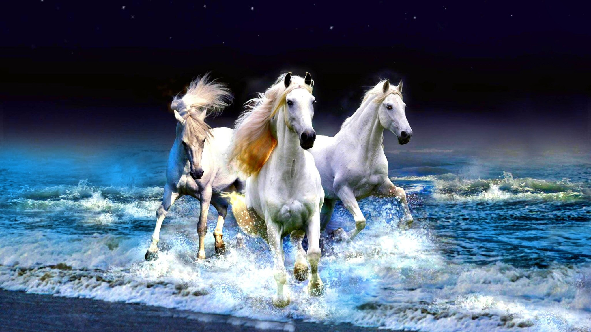 3d horse wallpaper,horse,mane,mustang horse,stallion,sky