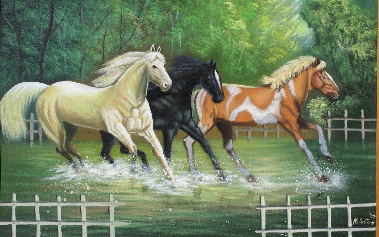 fine wallpaper,horse,vertebrate,mammal,mane,stallion