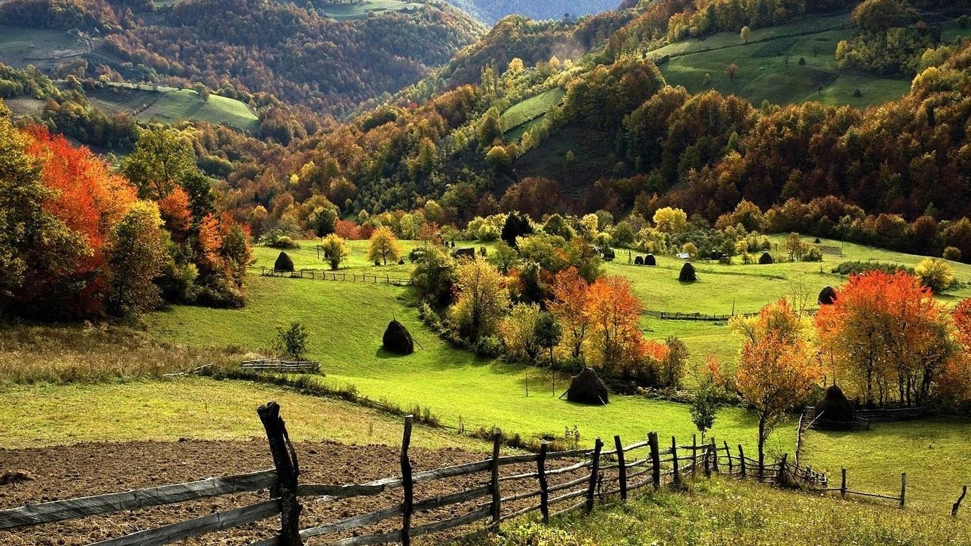 1366 x 768 resolution wallpaper,natural landscape,nature,highland,pasture,rural area