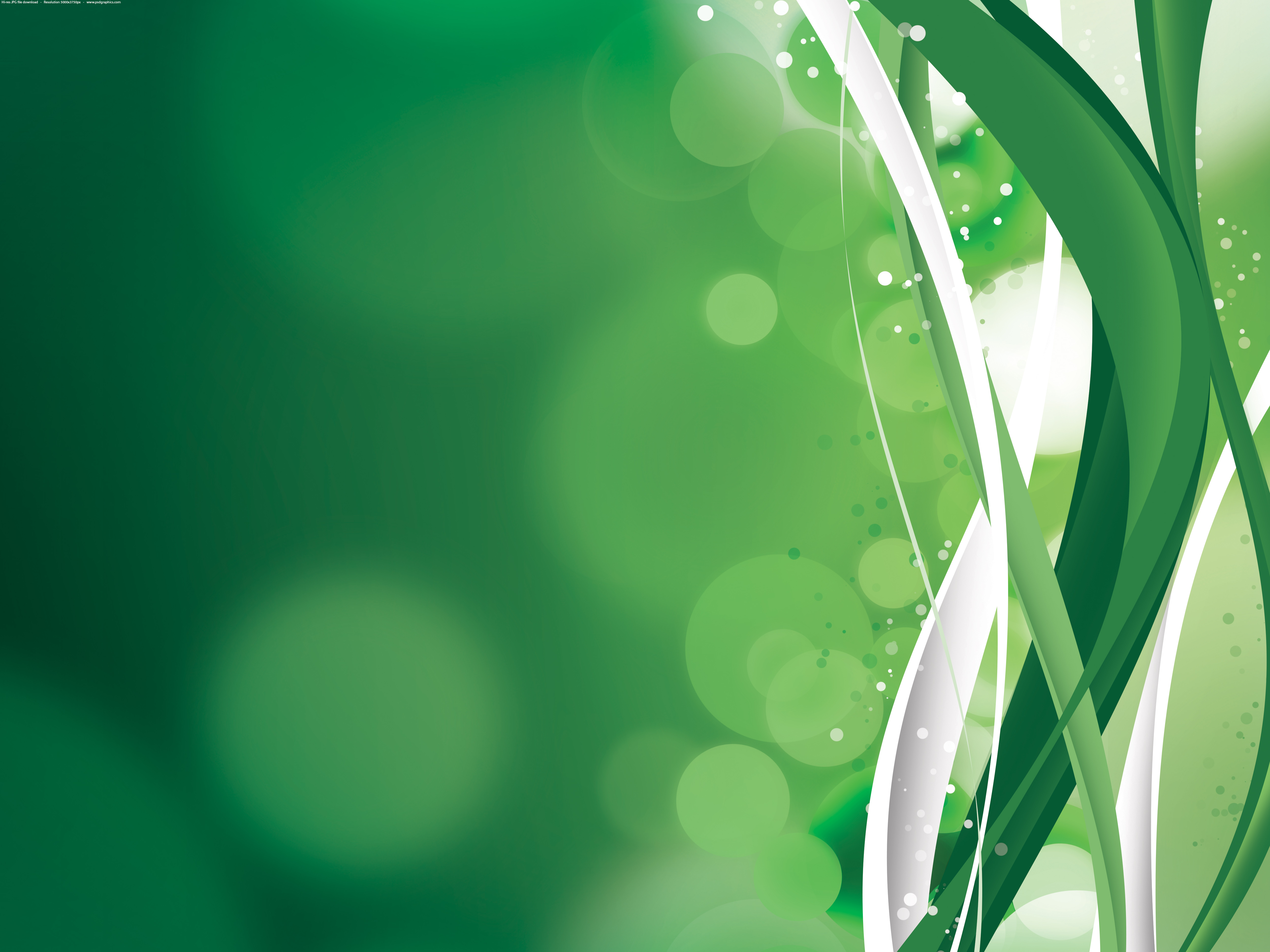 eye friendly wallpaper,green,water,grass,leaf,grass family