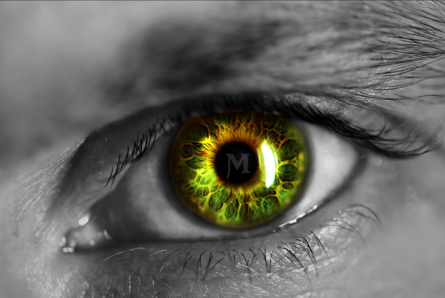 green eyes wallpaper,eye,iris,close up,green,organ