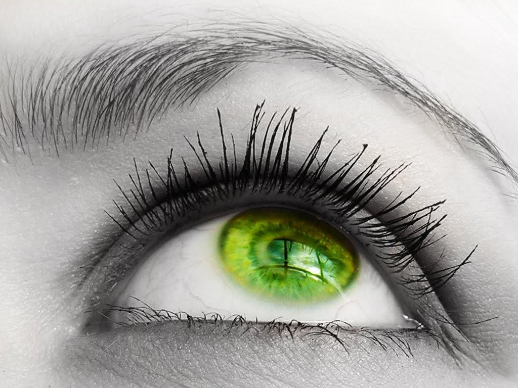 green eyes wallpaper,eyelash,eye,eyebrow,green,iris