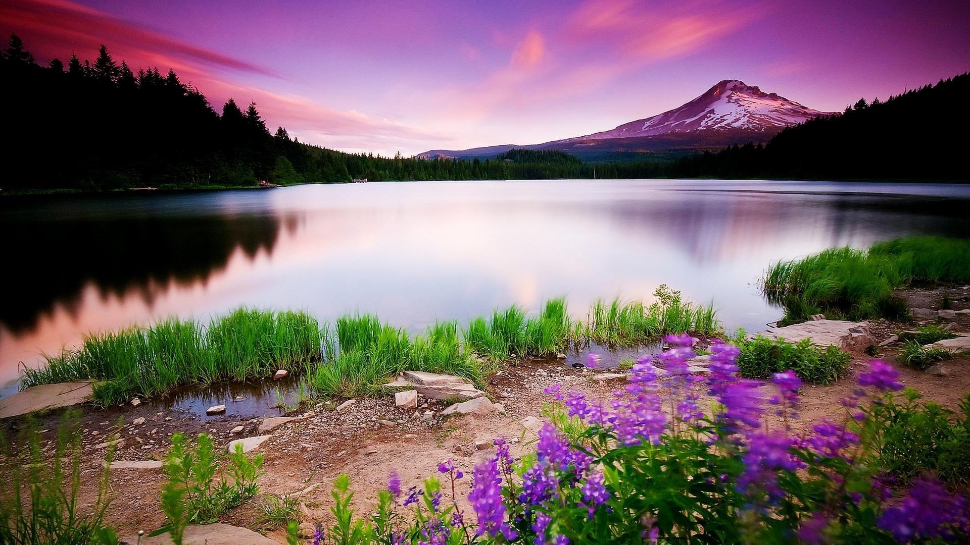 love wallpaper hd 1080p free download,natural landscape,nature,lake,sky,reflection
