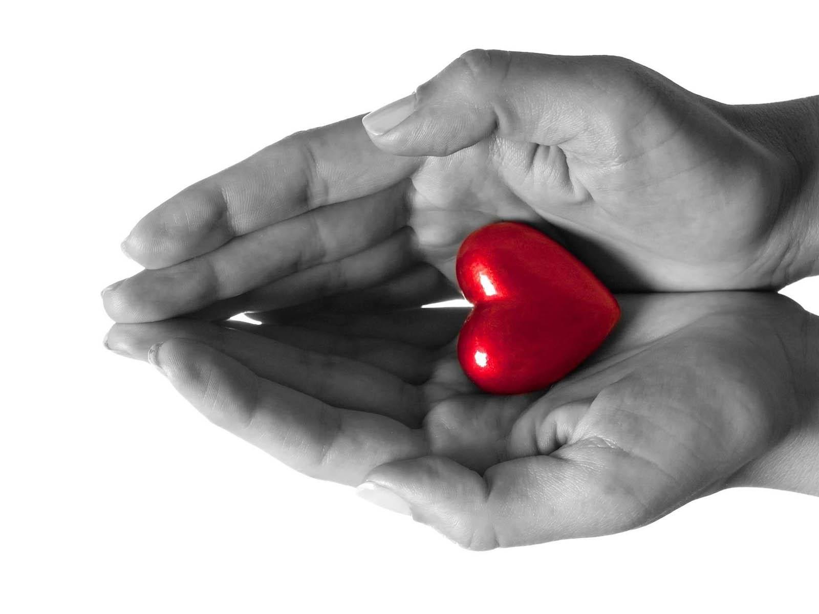 love hand wallpaper,red,hand,love,finger,heart