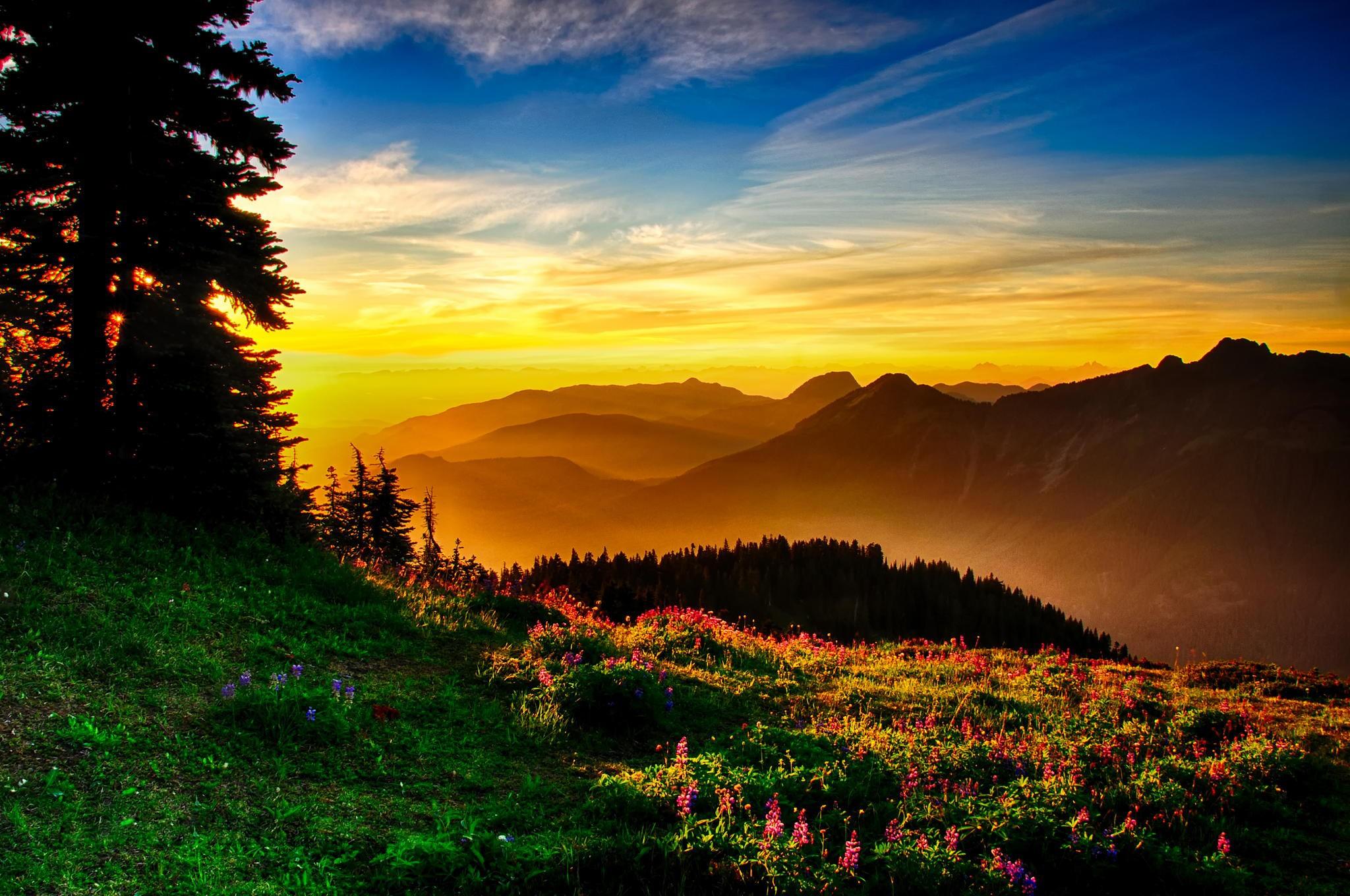 windows 10 wallpaper hd free download,sky,nature,natural landscape,mountainous landforms,sunrise