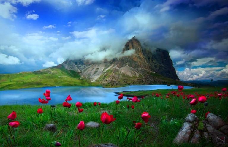 windows 10 wallpaper hd free download,natural landscape,nature,sky,meadow,landscape