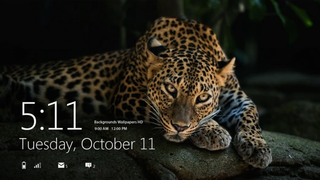 wallpapers de windows 10,terrestrial animal,vertebrate,wildlife,jaguar,mammal