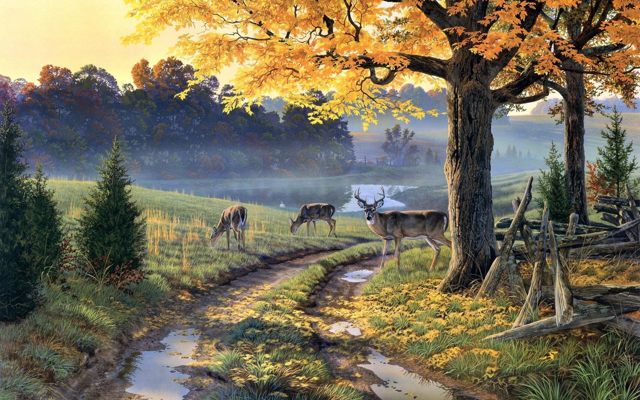 nature painting wallpaper,natural landscape,nature,painting,morning,landscape