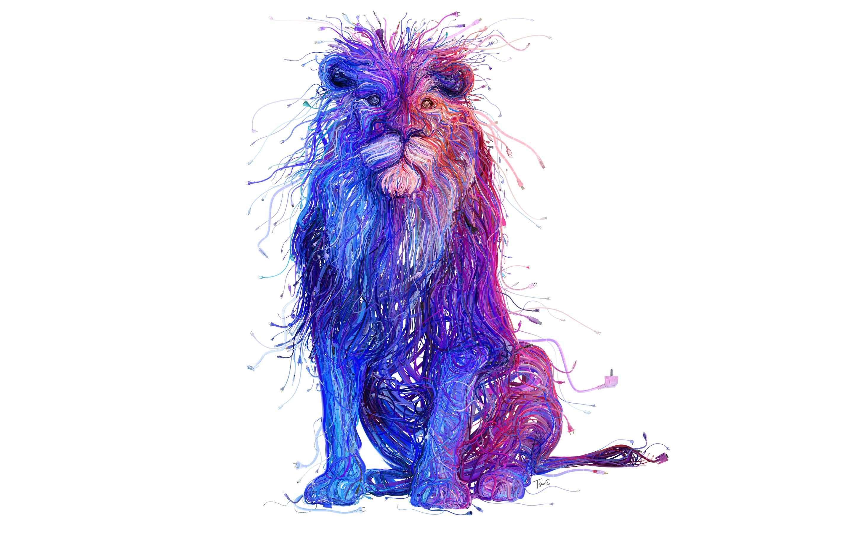 fondos de wallpaper,violet,purple,fur