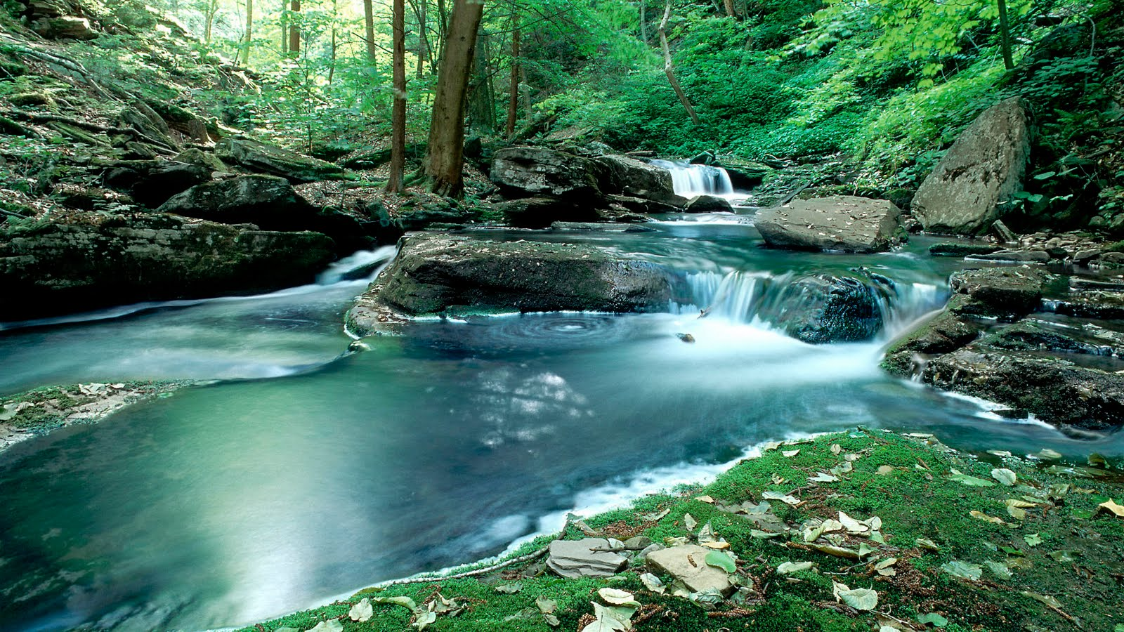 free desktop wallpaper nature,water resources,body of water,natural landscape,nature,stream