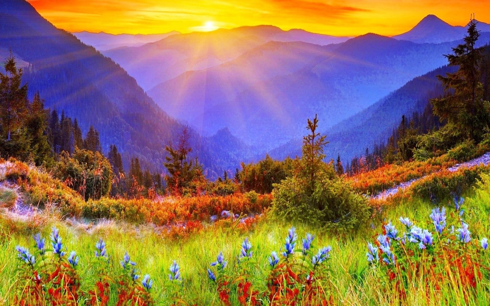 free desktop wallpaper,natural landscape,nature,wilderness,natural environment,morning