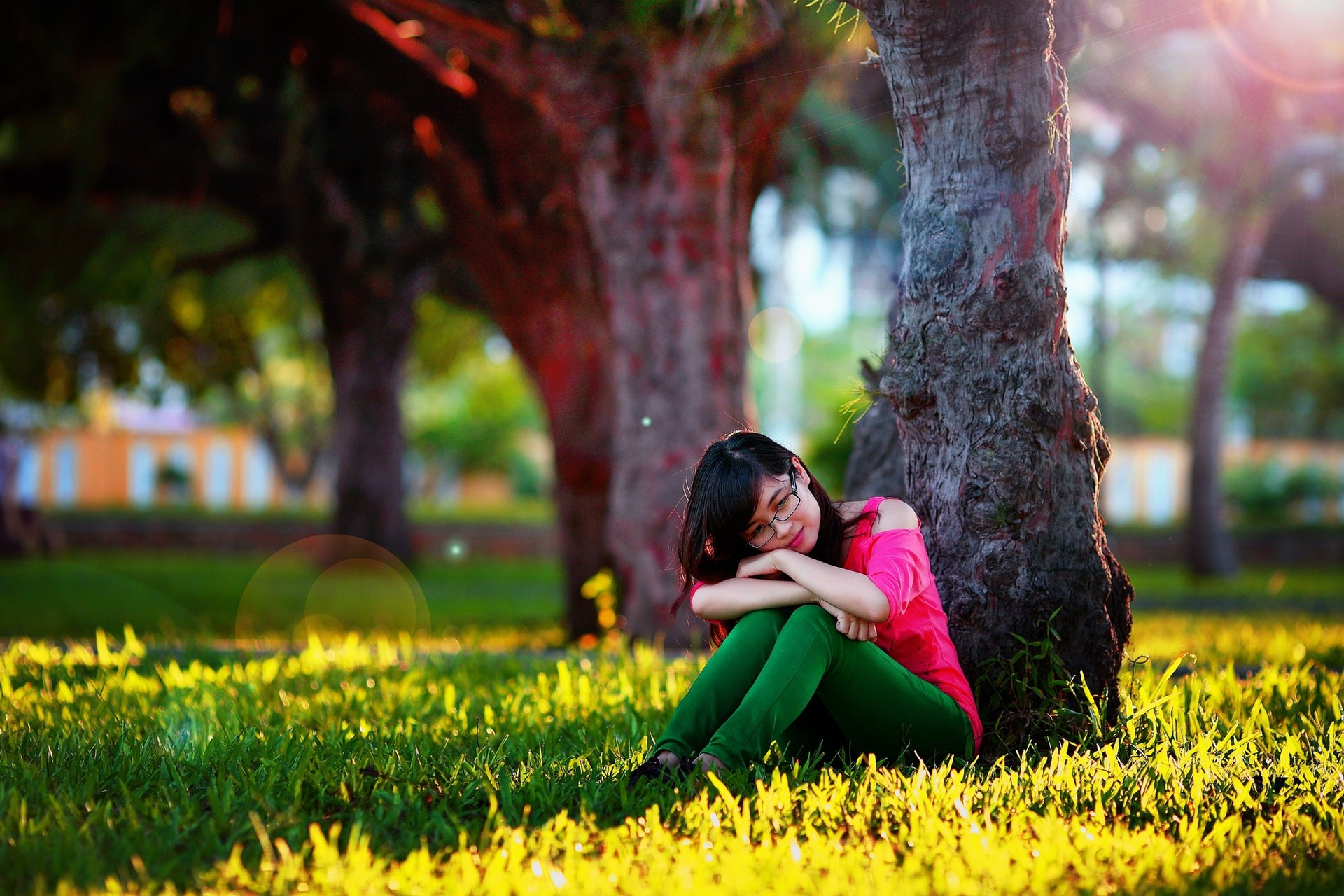 sweet love wallpaper download,people in nature,photograph,nature,grass,green