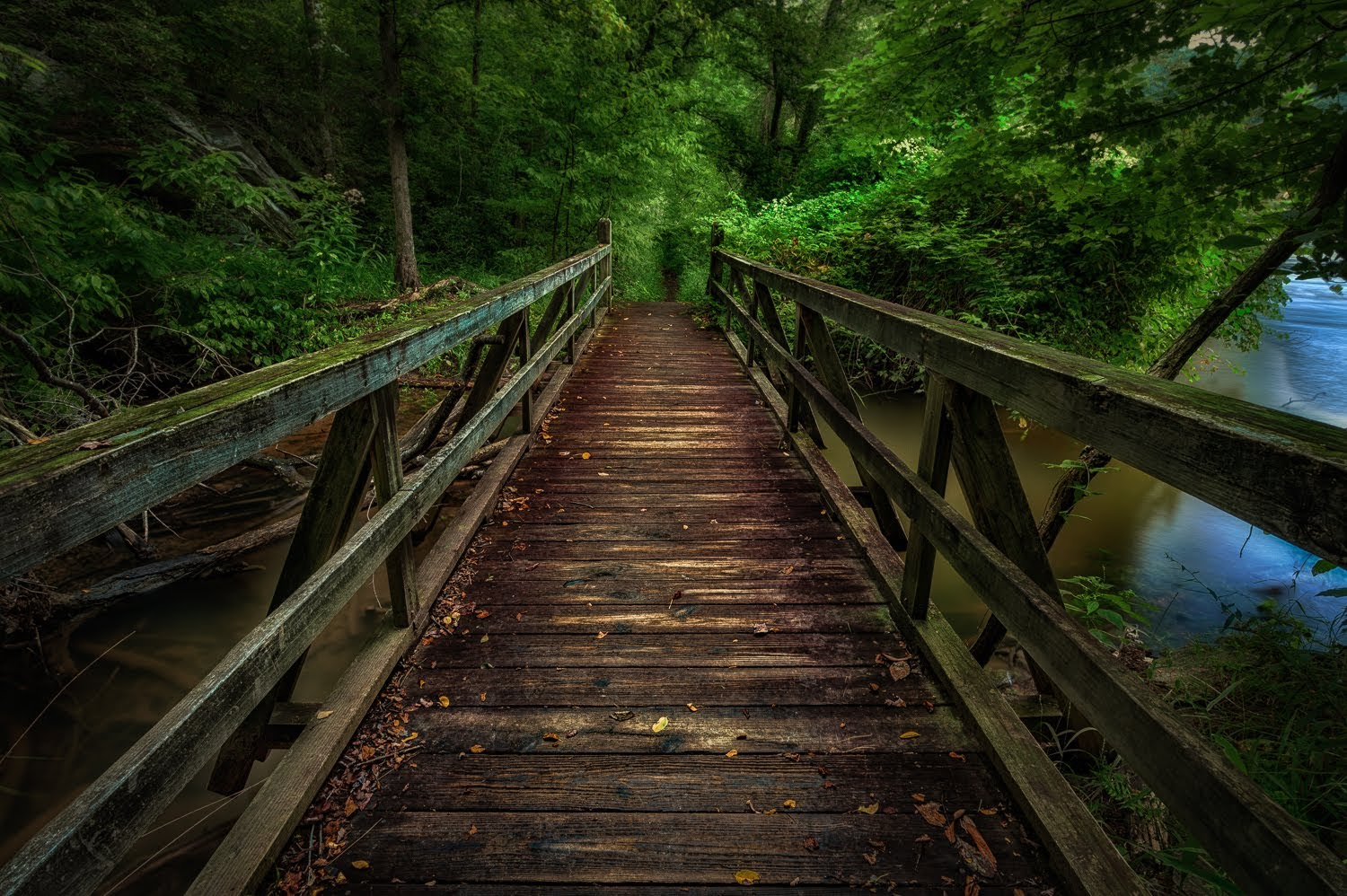 photography wallpaper,nature,bridge,nature reserve,natural environment,tree